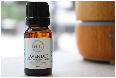 Lavender Oil | The Original Oil Shop