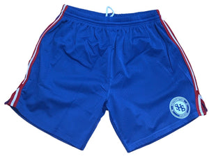 Basketball Mesh Shorts - Royal