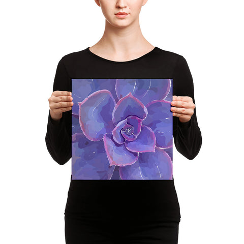 Moody Blues Succulent -by Hxlxynxchxle -Canvas Art Prints
