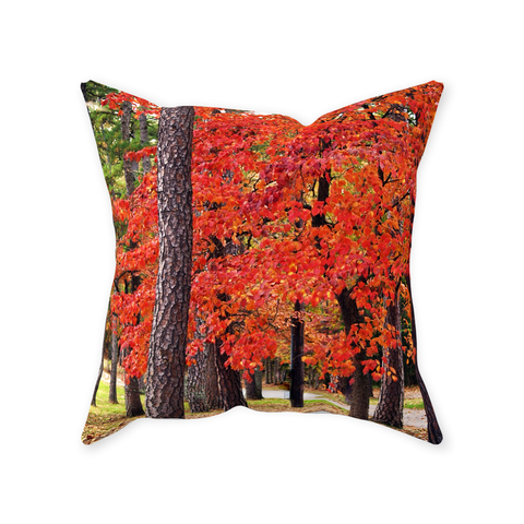 Tennessee Fall Pathway Throw Pillows