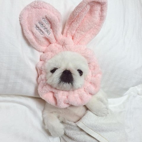 BUNNY HEADBAND - WHITE