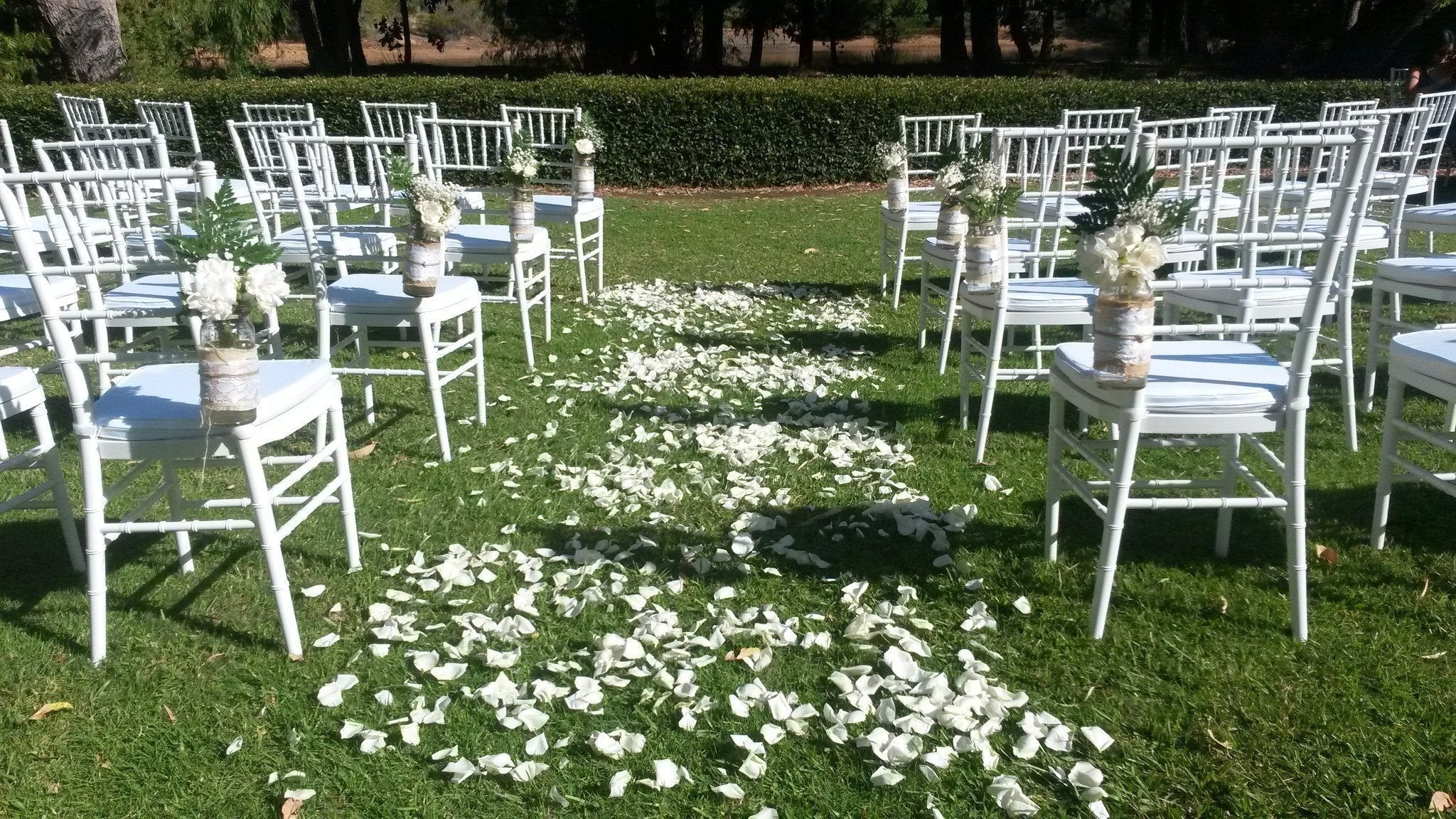 White Tiffany Chair for weddings