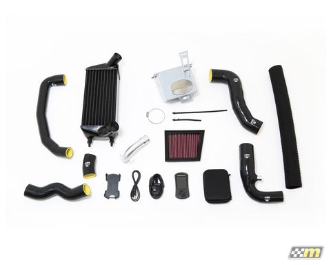 Fiesta 1.0 EcoBoost Mountune MR165 Power Upgrade