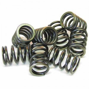 Duratec 2.0, 2.3 & 2.5 High Capacity Valve Spring Set