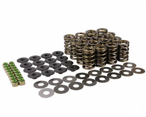 2.0 & 2.3 EcoBoost Piper Double Valve Spring Kit