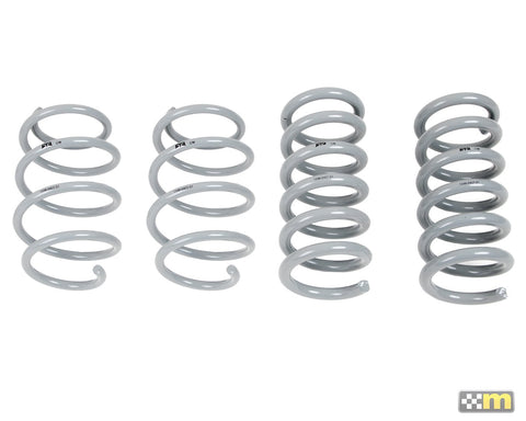 Mustang RTR Tactical Performance Lowering Springs 15-18