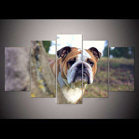 5 Piece Bulldog Canvas Print - Canvas Print
