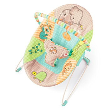 Bright Starts Patchwork Zoo Baby Bouncer