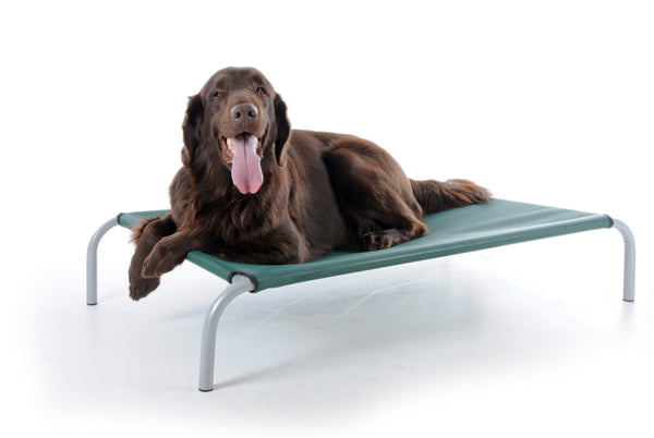 Home of the Original HiK9 Raised Dog Bed |Special Offers