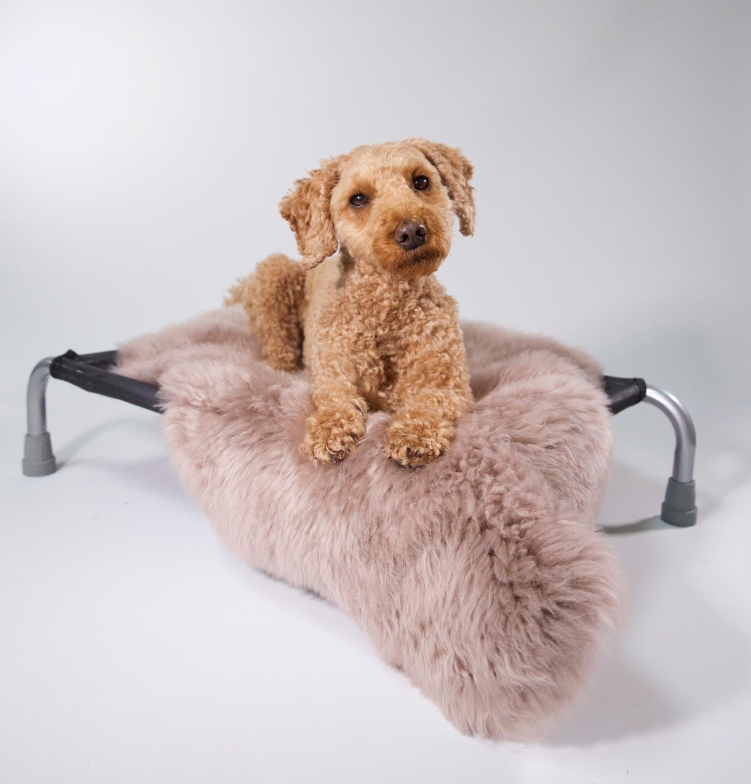 Raspberry Sheepskin - HiK9