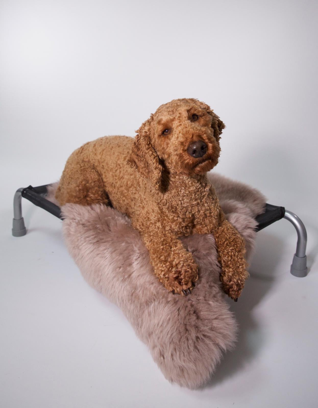 Spearmint Sheepskin - HiK9