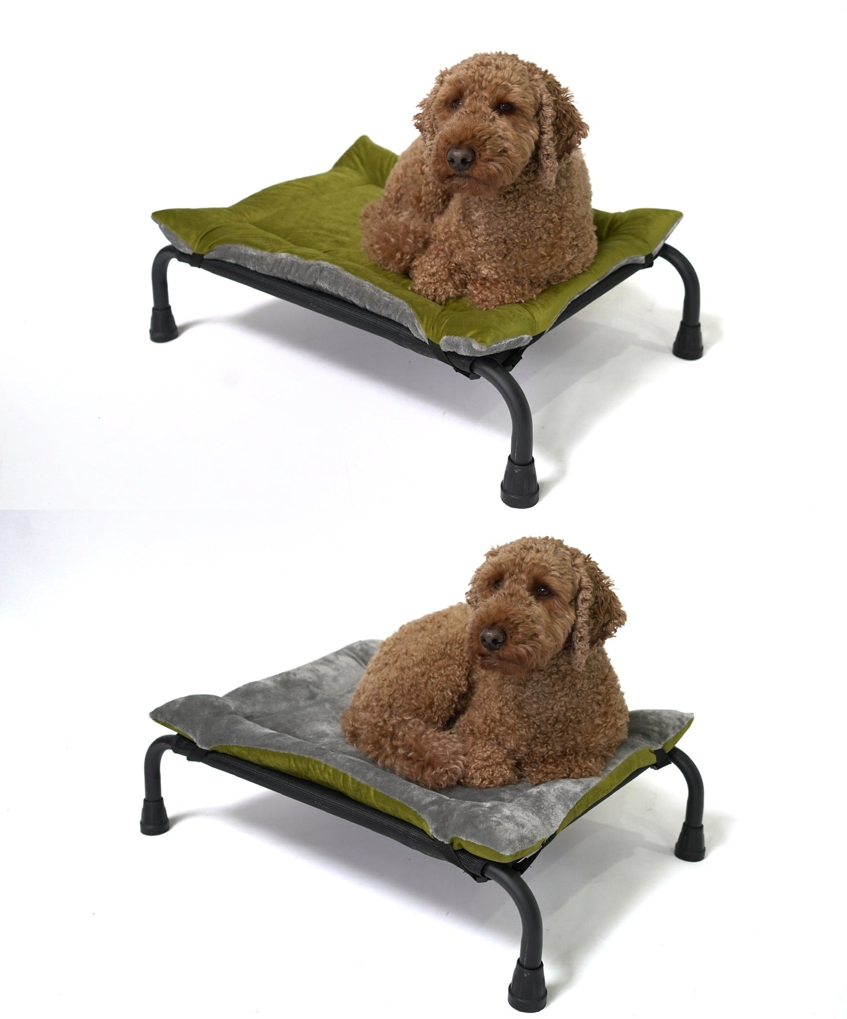 Olive Velvet & Grey Cuddle Soft Luxury Reversible Pad
