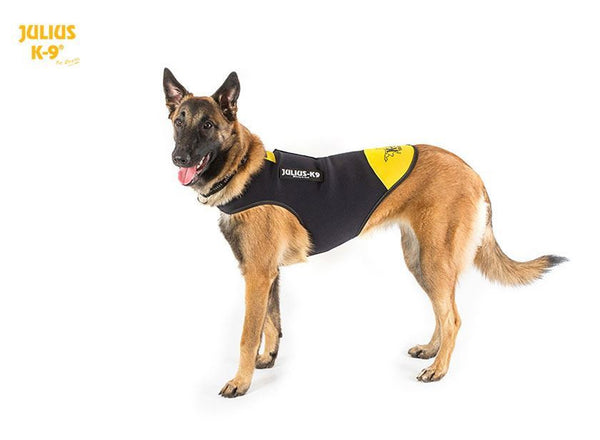 JULIUS-K9 IDC® NEOPRENE DOG JACKET