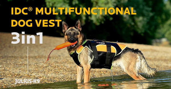 Julius K9 Swim Vest IDC® MULTIFUNCTIONAL DOG VEST 3 IN 1