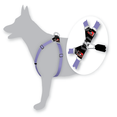 Black Dog Wear - Dog Harness