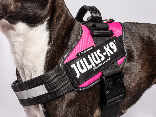 IDC Power Harness By Julius K9 - Solid Colours