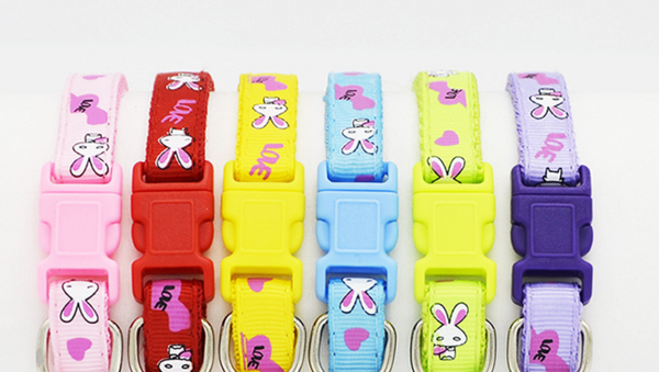 Bunny Love Puppy ID Collars ~ Set of 6