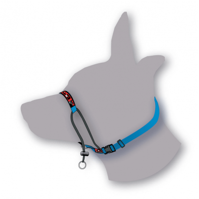 Black Dog Wear- Training Halter