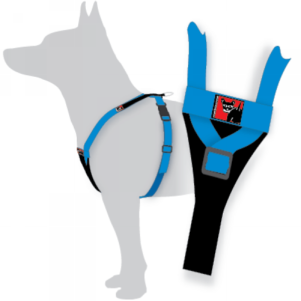 BlackDog Wear Tracking Harness - Y Front