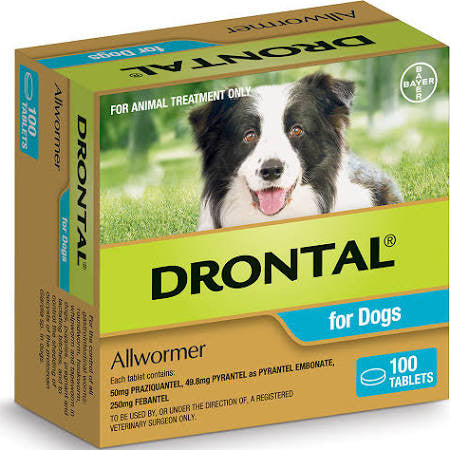 Drontal Allwormer For Dogs 10kg x 100 Tablets - Free Shipping