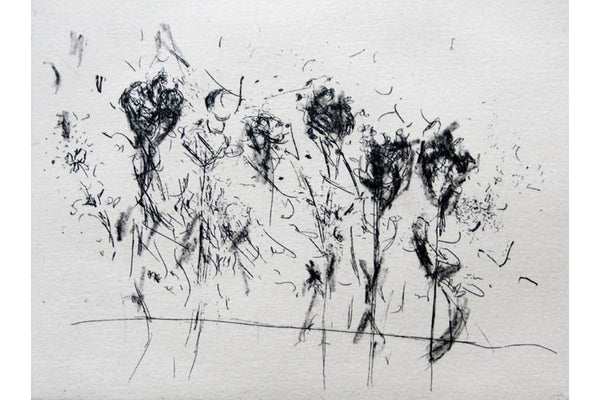 200112|12th January|Etching - Hard and Soft Ground