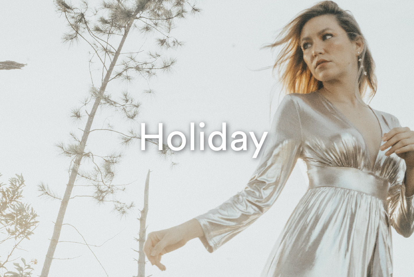 Collection: Holiday 2019