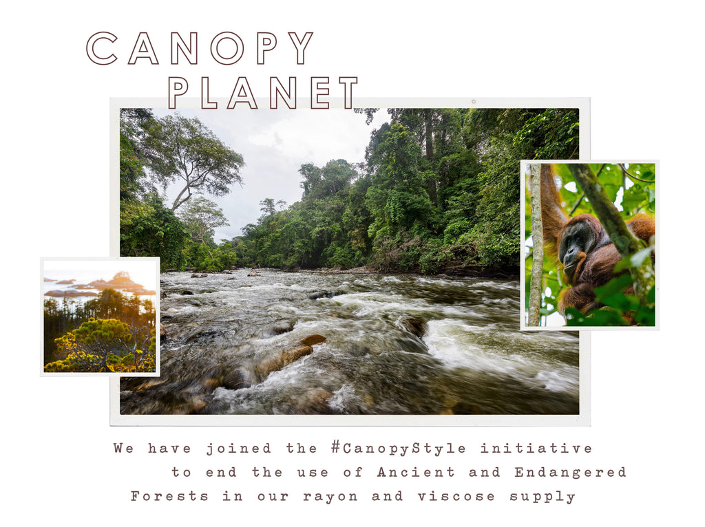 We have joined the #CanopyStyle initiative to end the use of Ancient and Endangered Forests in our rayon and viscose supply.
