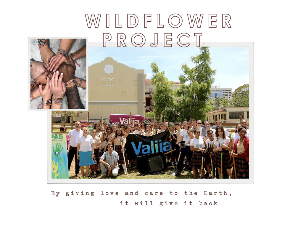 Wildflower Project. By giving love and care to the Earth, it will give it back.