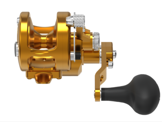 AVET SXJ6/4-MC RAPTOR TWO SPEED GOLD REEL