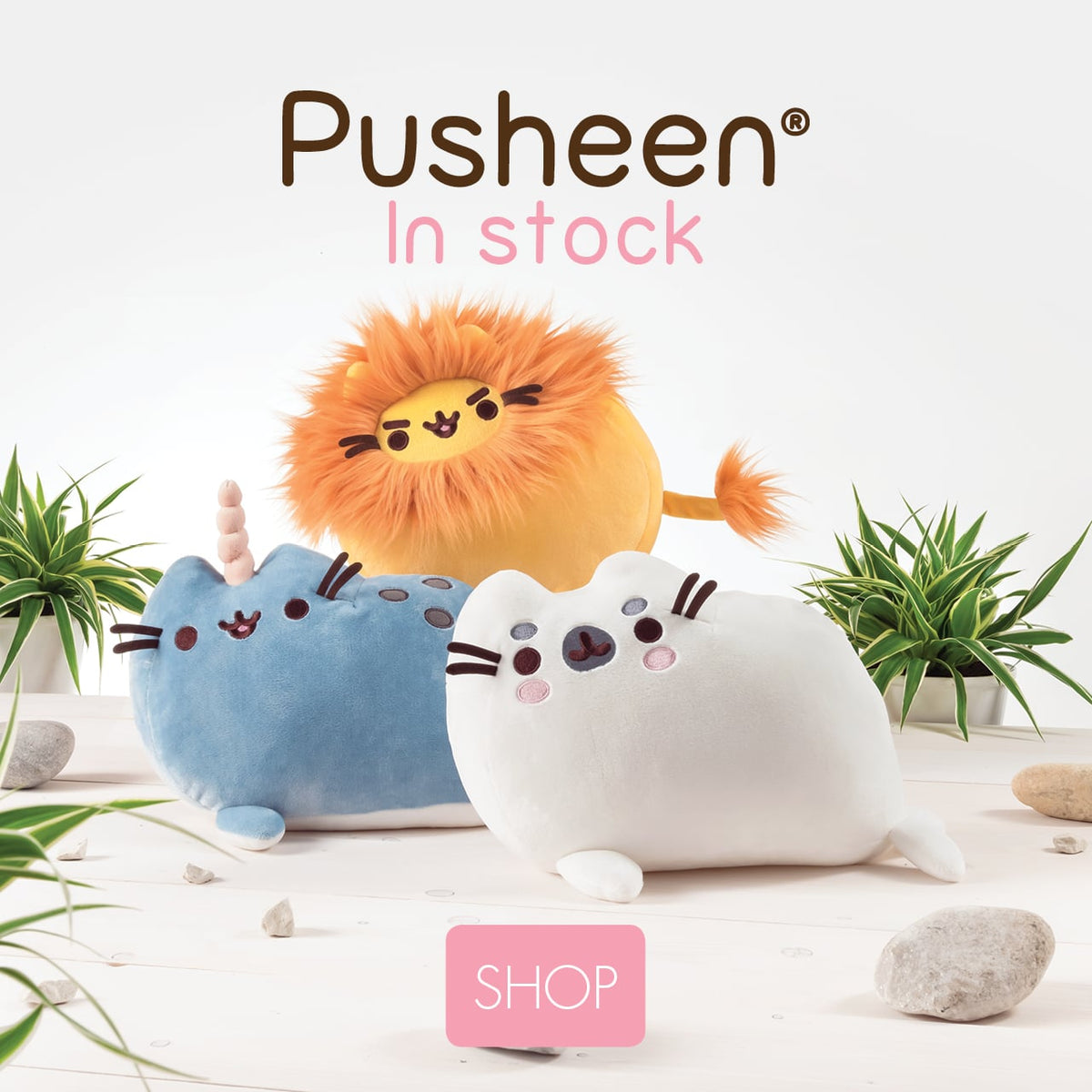 Pusheen in stock