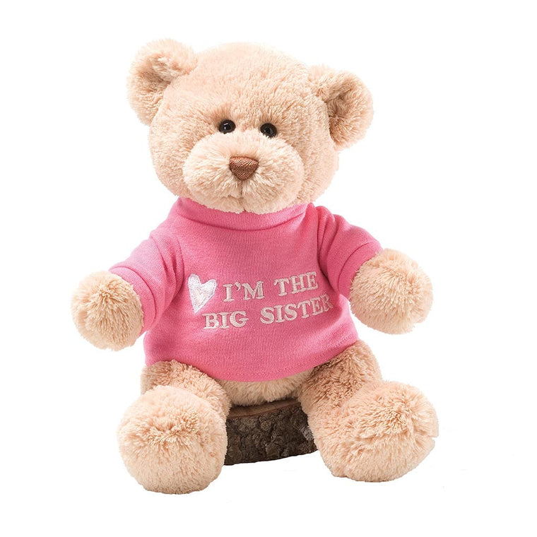 Baby GUND Big Sister Bear Soft Toy With Pink T-shirt