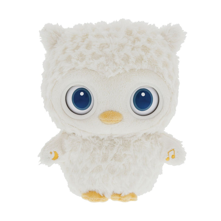 Sleepy Eyes Owl