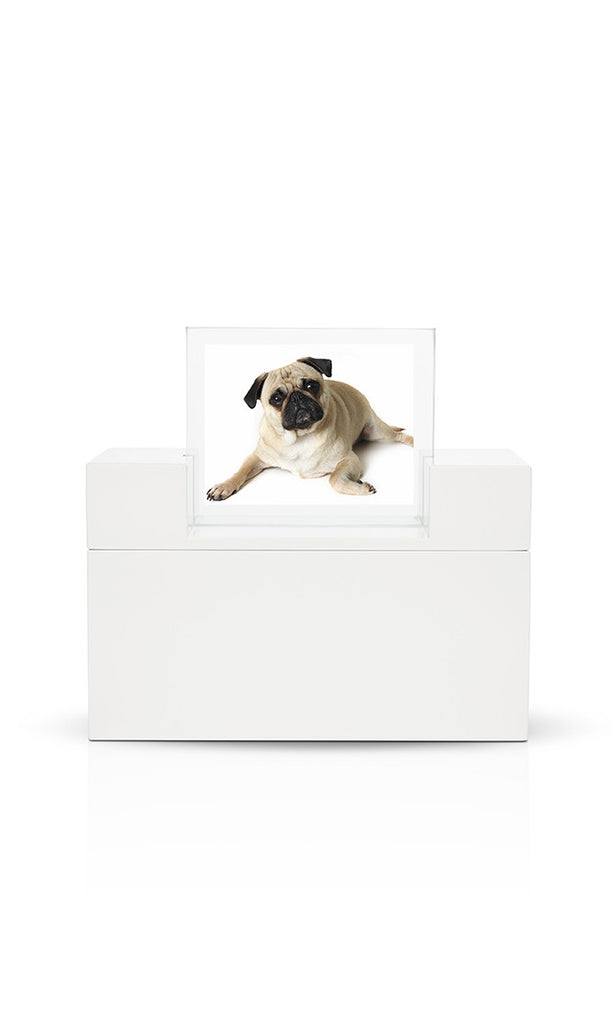 Modern Pet Urns For Ashes Terra Esprit In White Urns In Style