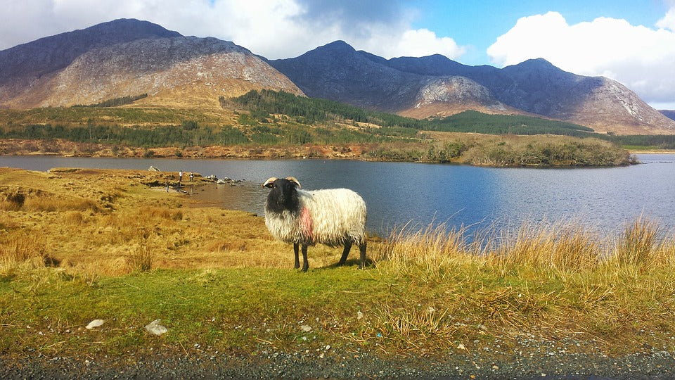 Connemara: My Experience of Ireland's Wild Atlantic Way
