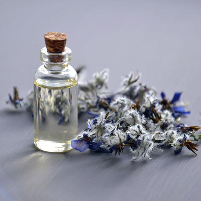 The Calming and Healing Effects of Lavender