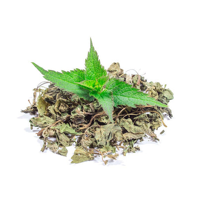 Benefits of Nettle (Urticae folium) Dried Leaves Herb