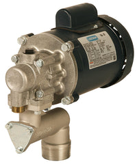 115 VAC, Oil Transfer Pump w/ Suction Pipe,Hose