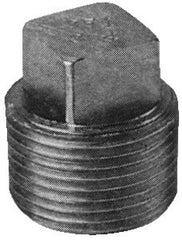 "1"" Standard Pipe Plug  (Cored)"