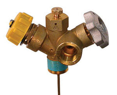 "3/4"" MPT combo valve with 12"" dip tube, 1/4"" gauge tap"