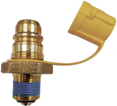 3/4 MPT Snap-Fill quick connec fill valve for forklift cyl
