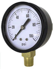"GAUGE-1/4"" MPT BRASS BTM MT 2"" DRY 0-100 PSI"
