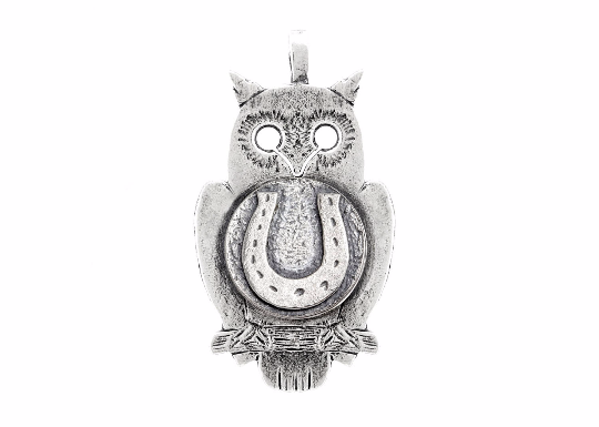 Coin necklace with the Horseshoe coin medallion on owl Noa Tam coin jewelry owl lovers owl Jewlery horses jewelry