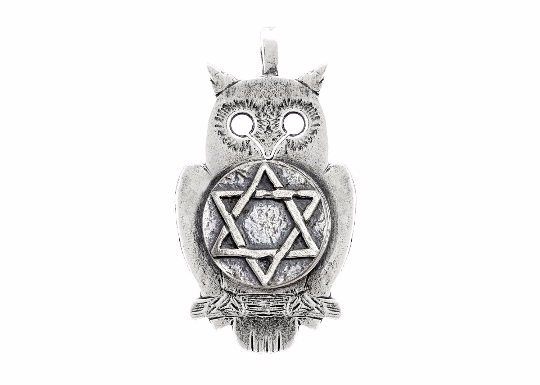 coin necklace with the Star of David coin medallion on owl jewish jewelry Star of David pendant owl jewelry