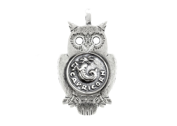 Capricorn Medallion Zodiac Astrology Pendant Necklace