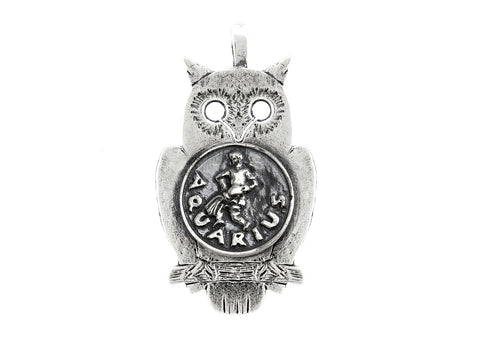 Aquarius Medallion Zodiac Pendant Necklace