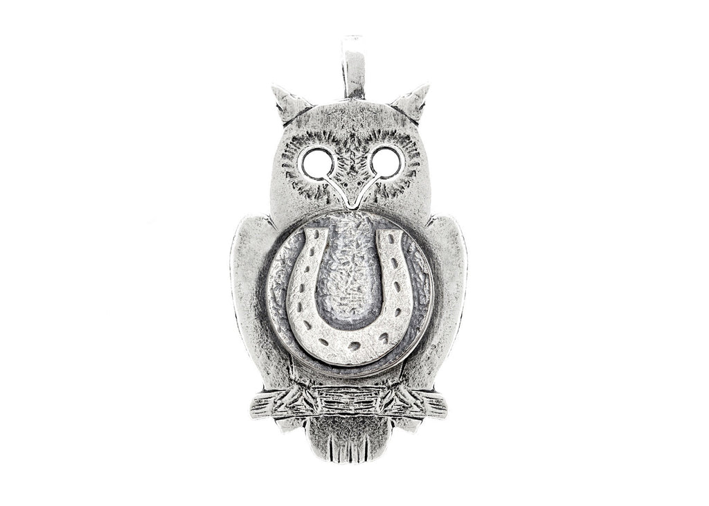 Owl with Horseshoe Coin Medallion
