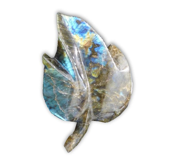 Labradorite Hand Carved Leaf