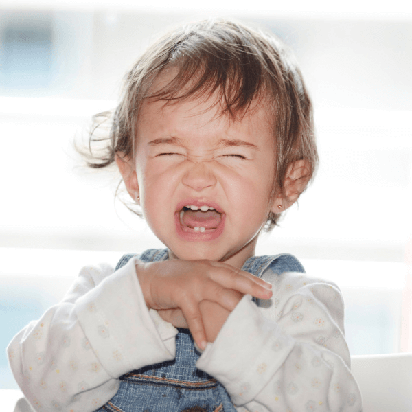 How Toddler Meltdowns Are Like Drunk Friends