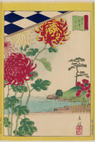 Utagawa Hiroshige II, Chrysanthemums at Somei in Tokyo, from the series Thirty-six Selected Flowers