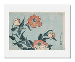 MFA Prints archival replica print of Katsushika Hokusai, Poppies from the Museum of Fine Arts, Boston collection.